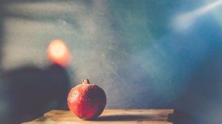 りんごちゃん 昔の写真
