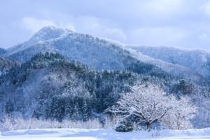 2020年雪が少ない原因はなぜ?北海道札幌やスキー場など水不足も懸念される。